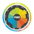 Kite 13,0 m2 Gaastra Pure/2018 (kite only) Gaastra Kiteboarding